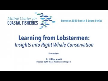 Lunch & Learn: Learning from Lobstermen: Insights into Right Whale Conservation