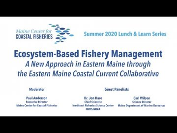 Lunch and Learn: Ecosystem-Based Fishery Management