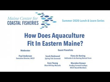 Lunch and Learn: How Does Aquaculture Fit in Eastern Maine?